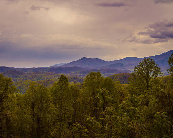 Photograph - Spring Time In The Smokys by Jack R Perry