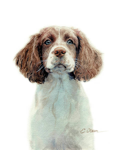 Liver Painting - Springer Pup by Emily Olson