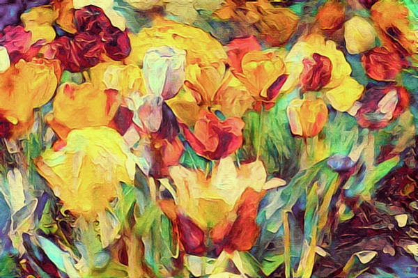 Mixed Media - Spring's First Tulips by Susan Maxwell Schmidt