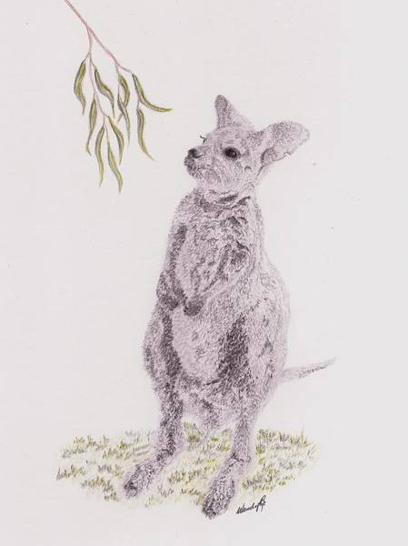 Kangaroo Drawing - Springtime Arrival by Wendy Brunell