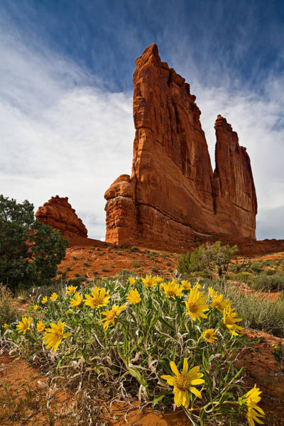 Wall Art - Photograph - Springtime At Arches by Guy Schmickle