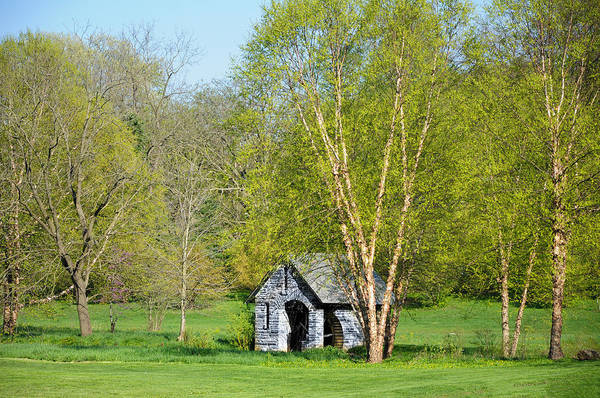Chestnut Hill Photograph - Springtime At Morris Arboretum by Bill Cannon