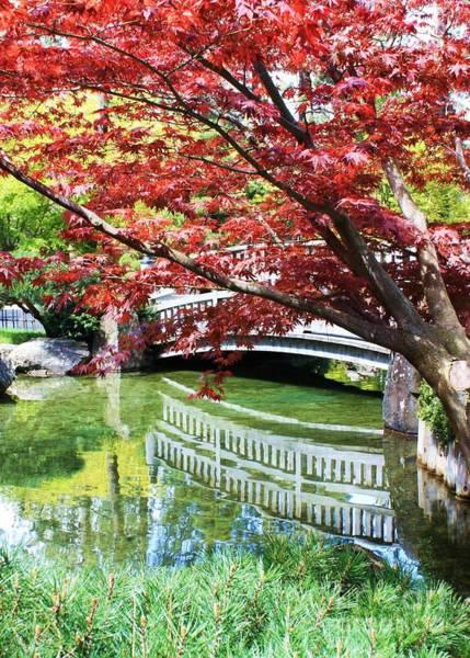 Photograph - Springtime Bridge by Carol Groenen