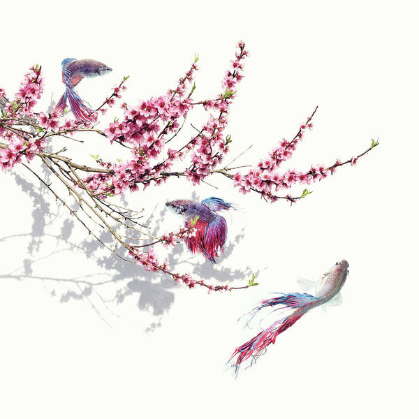 Wall Art - Photograph - Springtime by Floriana Barbu