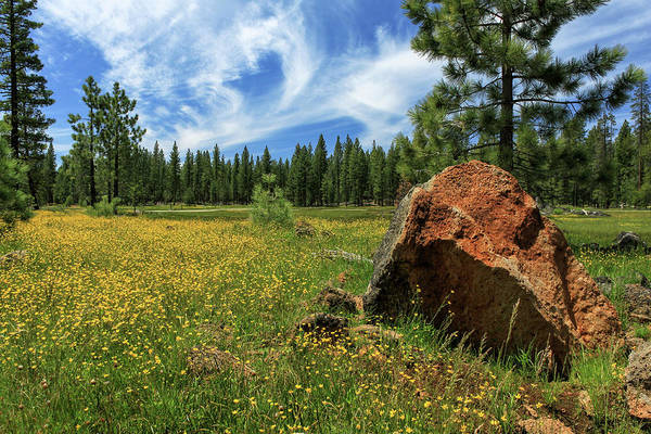 Photograph - Springtime In Lassen County by James Eddy