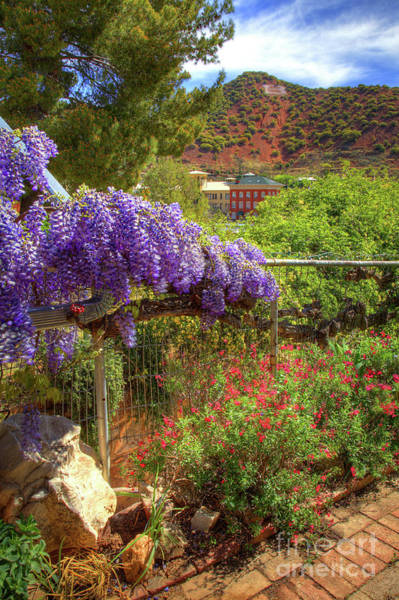 Photograph - Springtime In Old Bisbee Arizona by Charlene Mitchell