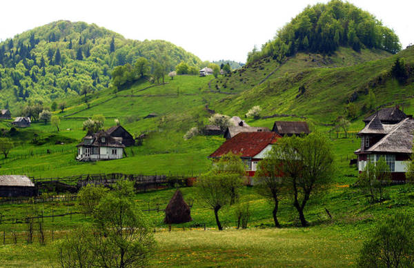Photograph - Springtime In Sirnea by Emanuel Tanjala