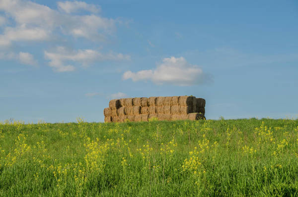 Photograph - Springtime Near Gettysburg by Bill Cannon