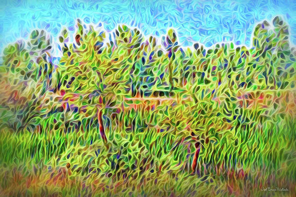 Digital Art - Springtime Radiance by Joel Bruce Wallach