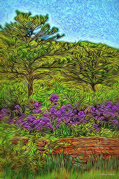 Digital Art - Springtime Trail Visions by Joel Bruce Wallach