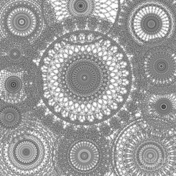 Digital Art - Spun Intertwined by Catherine Lott