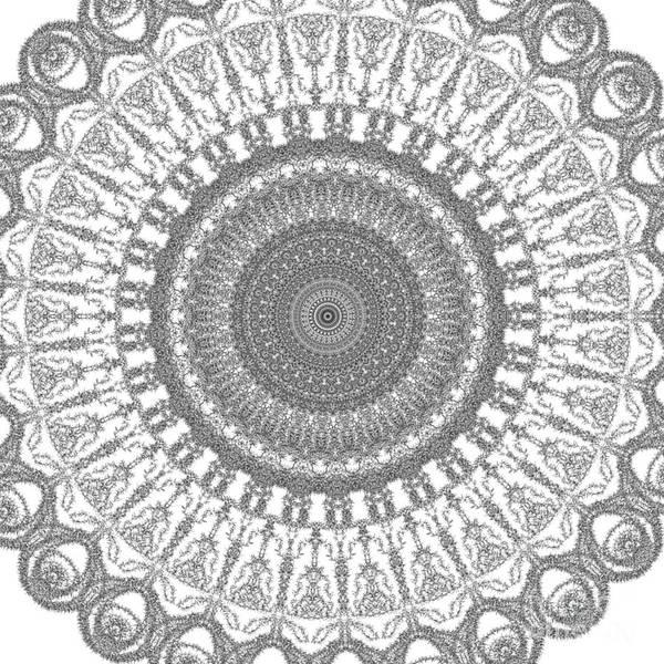 Digital Art - Spun Rose by Catherine Lott