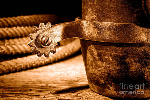 Wall Art - Photograph - Spur - Sepia by Olivier Le Queinec