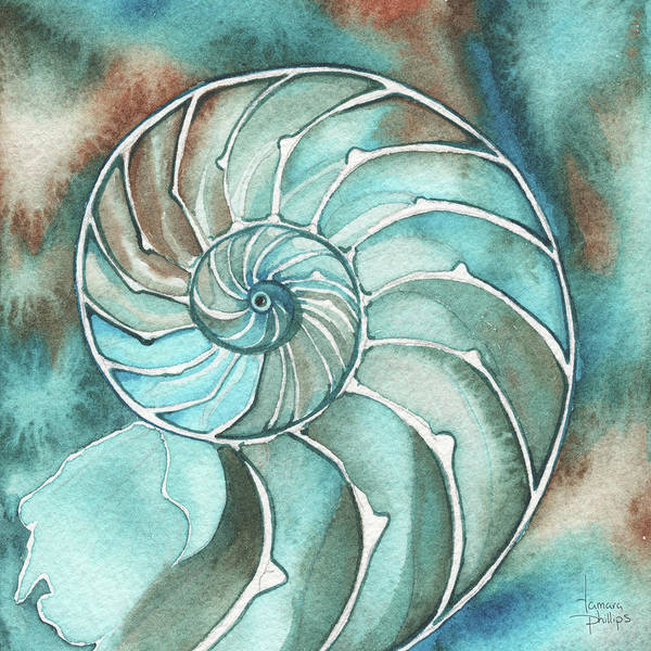 Wall Art - Painting - Square Nautilus by Tamara Phillips