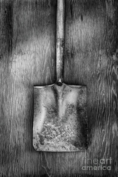 Wall Art - Photograph - Square Point Shovel Down 3 by YoPedro