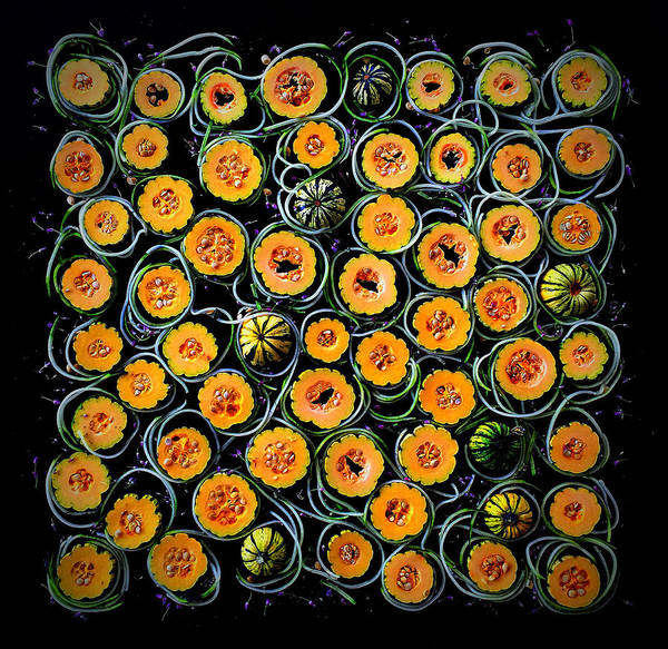 Photograph - Squash And Zucchini Patters by Sarah Phillips