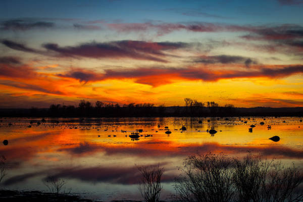 Photograph - Squaw Creek Sunset by Jeff Phillippi