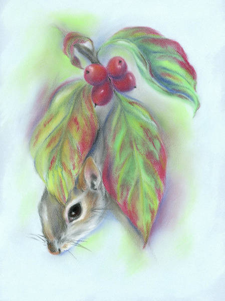 Pastel - Squirrel In The Autumn Dogwood by MM Anderson