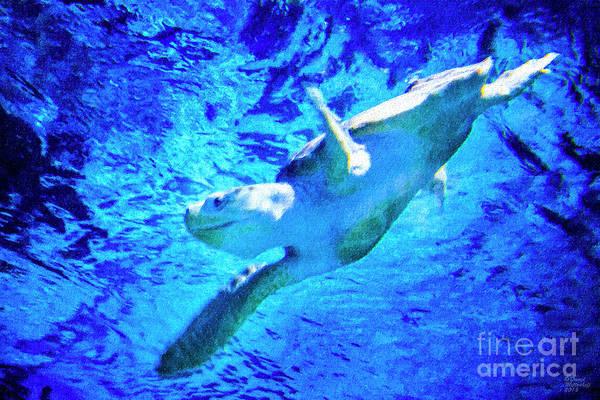 Dude Mixed Media - Sea Turtle by David Millenheft