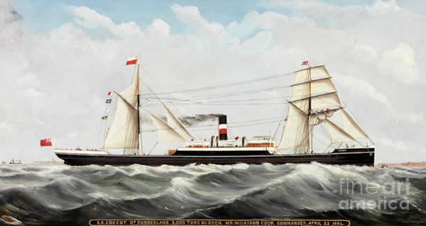 Sunderland Wall Art - Painting - Ss Cogent Of Sunderland by John Hudson