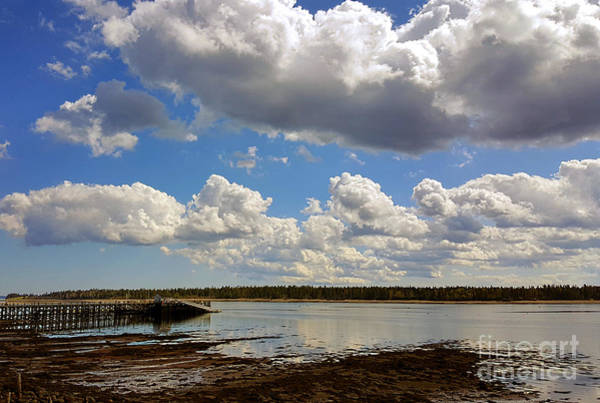 Photograph - St. Andrews At Low Tide by Michael Graham