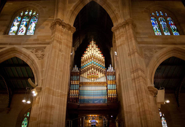 Photograph - St Andrew's Cathedral Sydney by Jenny Setchell