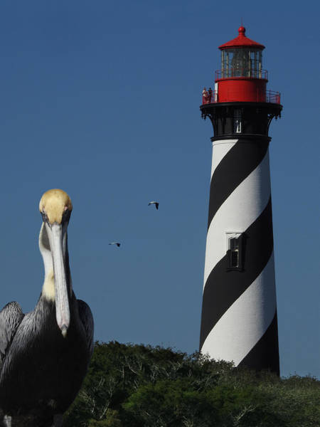 Photograph - St. Augustine Lighthouse by Rod Seel