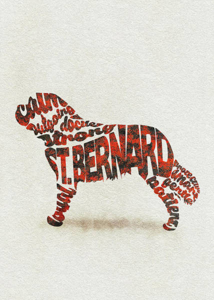 Painting - St. Bernard Dog Watercolor Painting / Typographic Art by Inspirowl Design