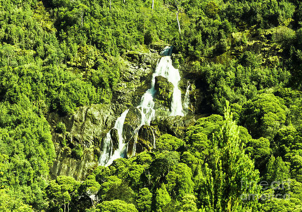 Wall Art - Photograph - St Columba Falls Tasmania by Jorgo Photography - Wall Art Gallery