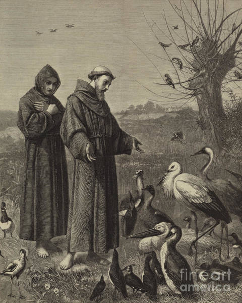 Wall Art - Drawing - St Francis Preaches To The Birds  by Henry Stacey Marks