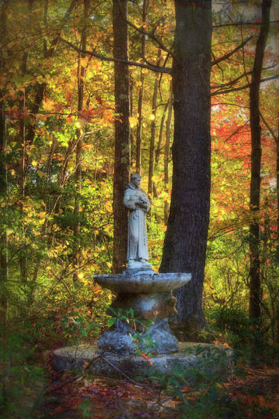 Photograph - St. Francis Statue - Marlborough, Nh by Joann Vitali