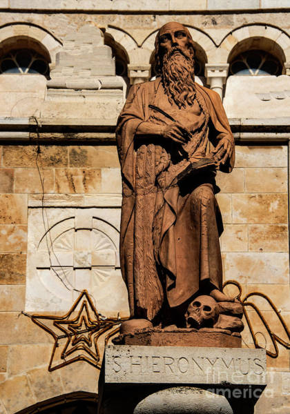 Photograph - St. Jerome by Mae Wertz