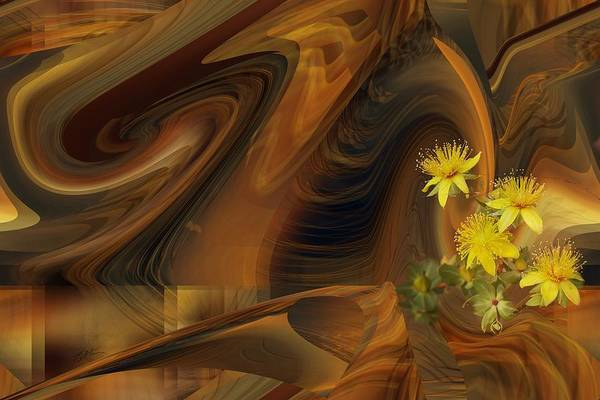 Digital Art - St John's Wort In An Abstract by rd Erickson