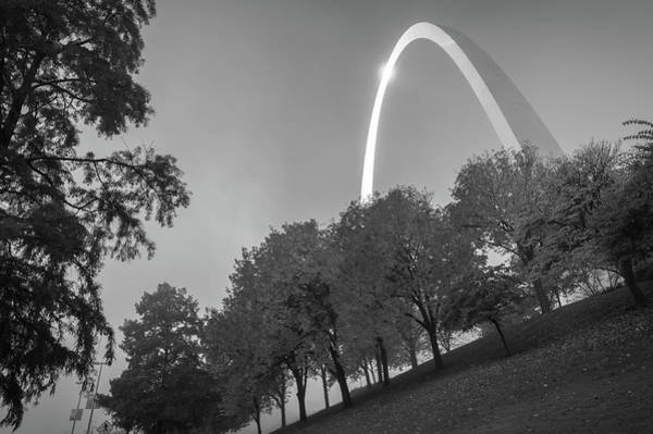 Photograph - St. Louis Arch Behind The Trees - Black And White by Gregory Ballos