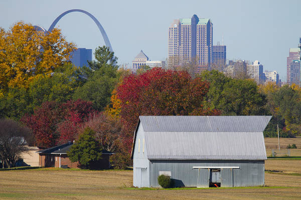 St Louis Arch Painting - St Louis Skyline From Illinois by Garry McMichael