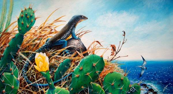 Painting - St. Lucia Whiptail by Christopher Cox