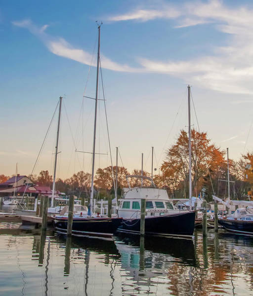 Wall Art - Photograph - St Michaels Maryland Marina by Bill Cannon