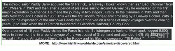 Mixed Media - St Parrick Info by Val Byrne