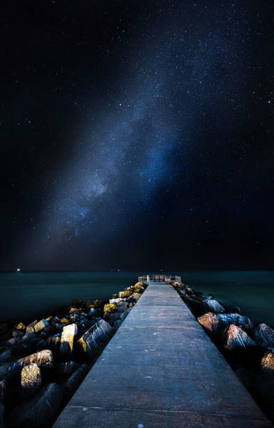 Wall Art - Photograph - St. Pete Night by Marvin Spates