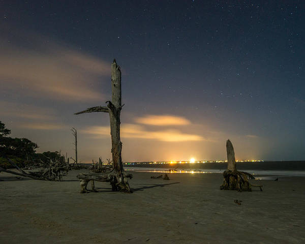 Photograph - St. Simons Beyond Driftwood by Chris Bordeleau