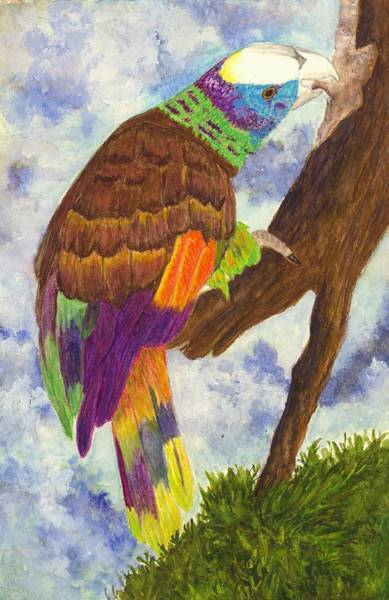 Wall Art - Painting - St. Vincent Parrot by Michael Vigliotti