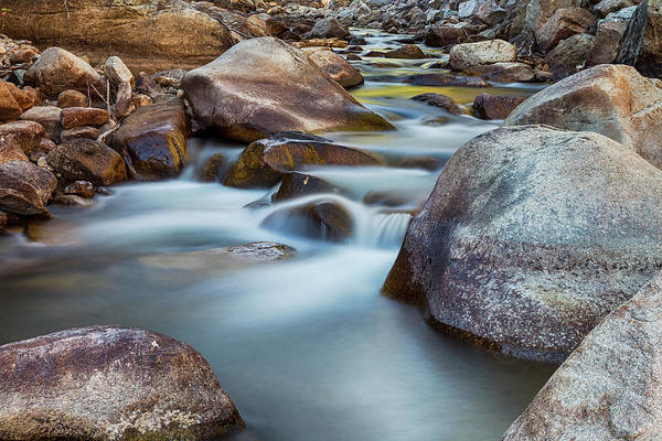 Photograph - St Vrain Streaming by James BO Insogna
