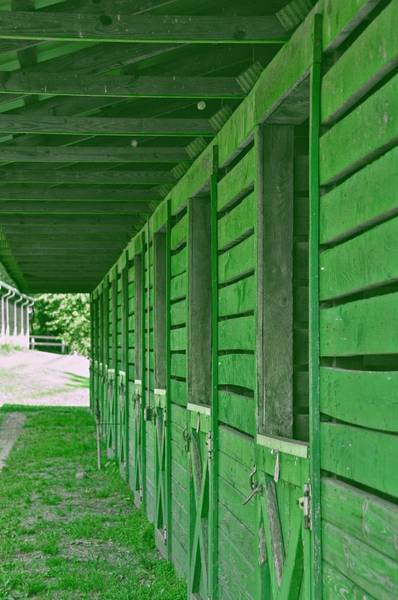 Photograph - Stables Of Green by Dressage Design