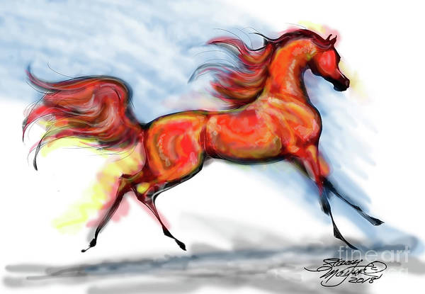 Digital Art - Staceys Arabian Horse by Stacey Mayer