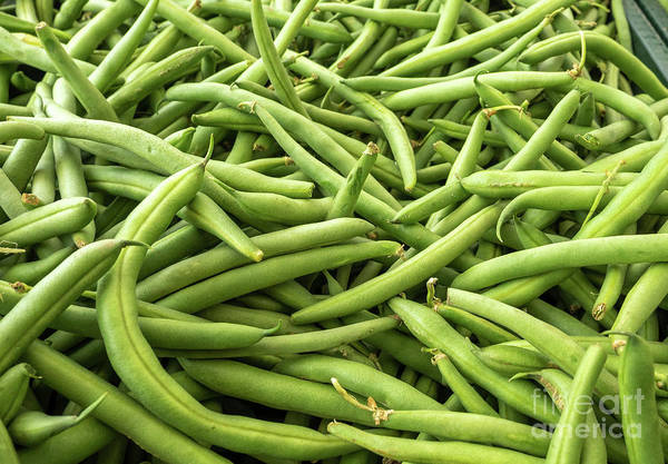 Photograph - Stack Of Green Beans Arranged For Sale by PorqueNo Studios