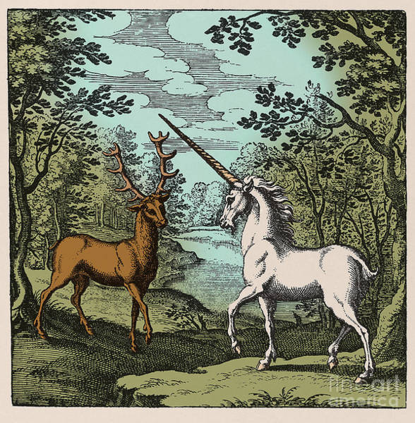 Photograph - Stag And Unicorn 18th Century by Science Source