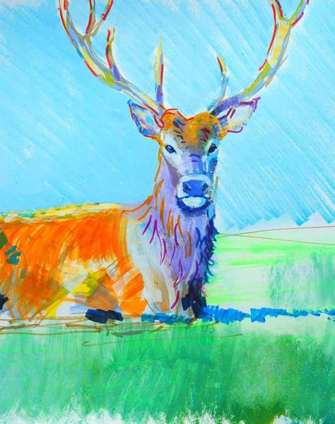 Mixed Media - Stag With Antlers Laying Down by Mike Jory