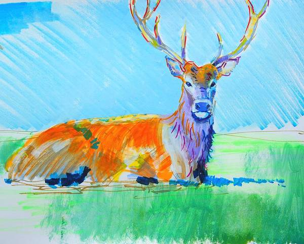 Mixed Media - Stag With Antlers Lying Down by Mike Jory