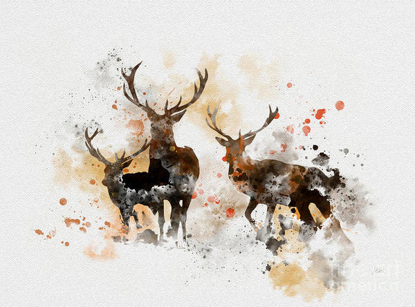 Woodland Animals Mixed Media - Stags by My Inspiration