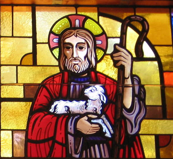 Photograph - The Good Shepherd by Karen J Shine